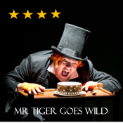 Mr Tiger Stars
